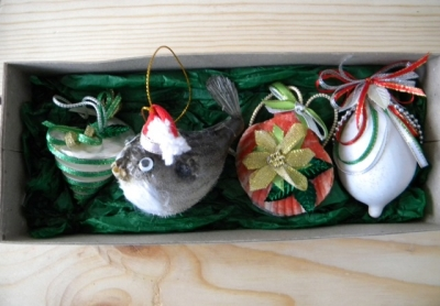 Sea Shell Christmas Ornaments (4 Pc. Box Set).
