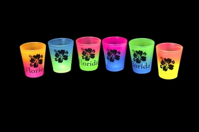 Rainbow Shot Glass Hibiscus Design - Assorted Colors