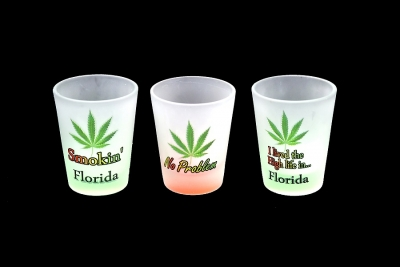 1163 - Frosted Neon Funny Shot Glass (Three Assorted Designs)