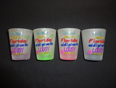 Frosted Funny Shot Glass - Lousy Shot - Assorted Colors
