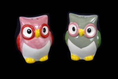 1620 - Ceramic Owl Salt & Pepper Shaker