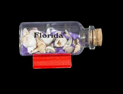 G1029 - Bottle Magnet with Sand & Shells on Wood Base - Assorted Colors