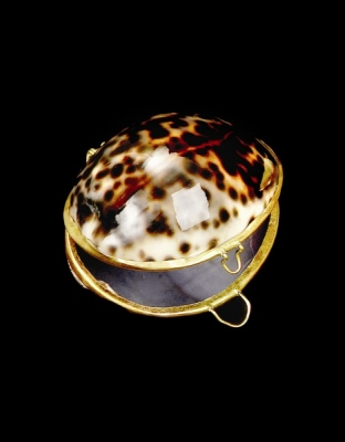 Tiger Cowry Coin Purse